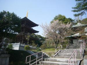 20080415皇祖皇太神宮、酒列、大洗磯前神社10
