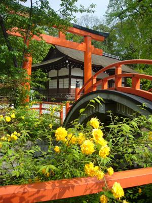 京都 (2008年4月26日)28