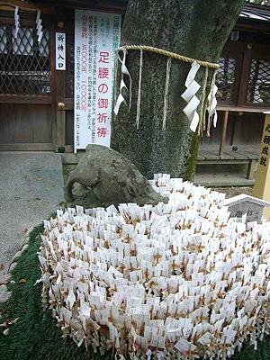 京都 (2008年4月26日)42