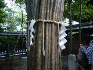 京都 (2008年4月26日)43