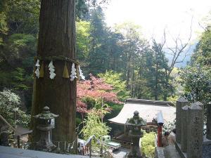 京都 (2008年4月27日)8