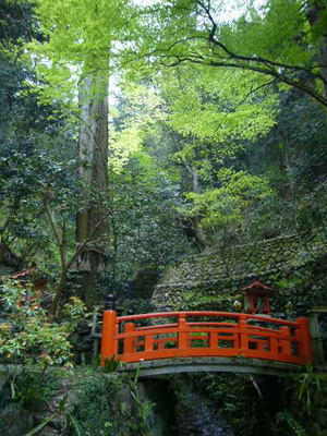 京都 (2008年4月27日)13