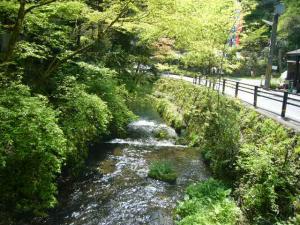 京都 (2008年4月27日)27
