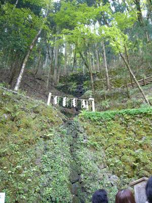 京都 (2008年4月27日)34