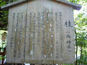 京都 (2008年4月27日)36