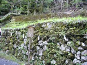 京都 (2008年4月27日)46