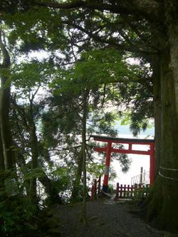 20080530箱根神社5
