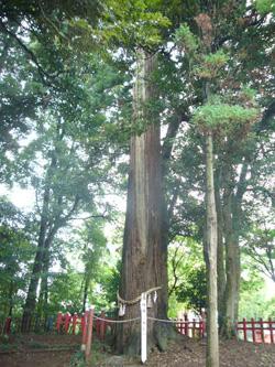 20080829産土5 摩賀多神社7