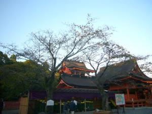 富士浅間神社17