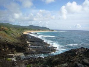 ハワイvol.2(2008年12月3日)2