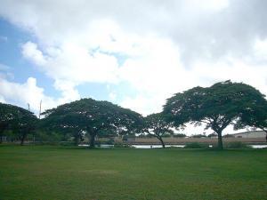ハワイvol.2(2008年12月3日)6