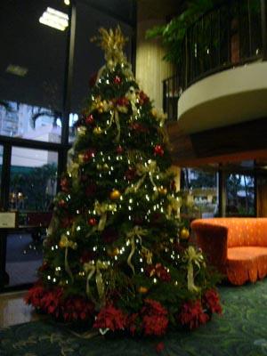 ハワイvol.2(2008年12月3日)40
