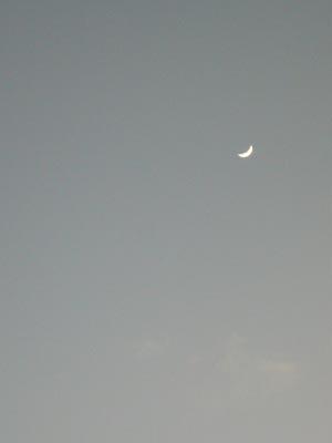 ハワイvol.2(2008年12月3日)41