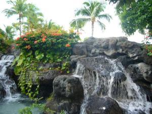 ハワイvol.3(2008年12月5日)1