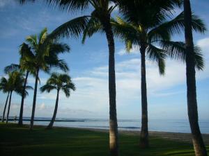 ハワイvol.3(2008年12月5日)5