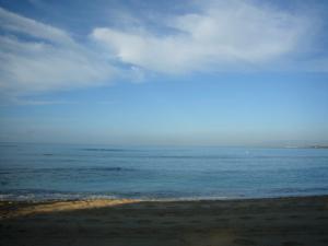 ハワイvol.3(2008年12月5日)6
