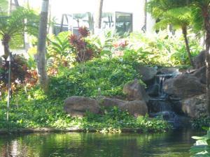 ハワイvol.4(2008年12月6日)4
