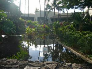 ハワイvol.4(2008年12月6日)6