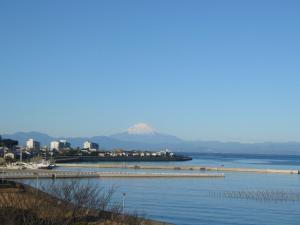 三崎葉山(2009年1月2日)1