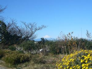 三崎葉山(2009年1月2日)5