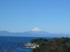三崎葉山(2009年1月2日)8