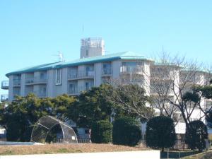 三崎葉山(2009年1月2日)10