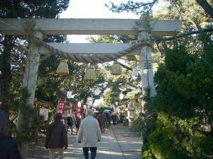 三崎葉山(2009年1月2日)12