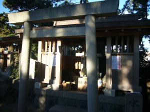 三崎葉山(2009年1月2日)13