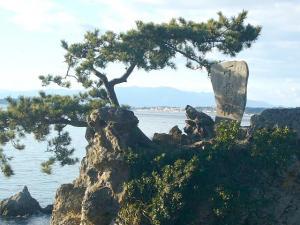 三崎葉山(2009年1月2日)20