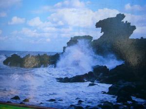 済州島vol.1(2009年3月24日)2