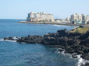 済州島vol.1(2009年3月24日)3