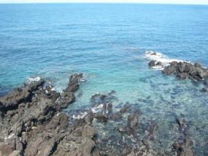 済州島vol.1(2009年3月24日)4
