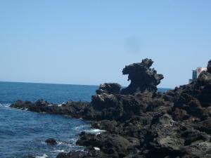済州島vol.1(2009年3月24日)8