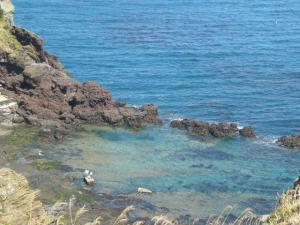 済州島vol.2(2009年3月25日)20