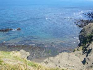 済州島vol.2(2009年3月25日)21