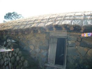 済州島vol.2(2009年3月25日)25