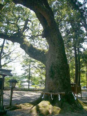 事任八幡神社11-1