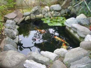 走り水神社11