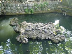 麻賀多神社3