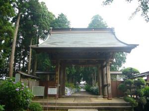 東飯倉(2009年6月13日)19