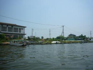 佐原水生植物園(2009年6月27日)14