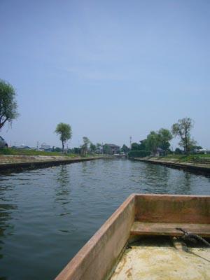 佐原水生植物園(2009年6月27日)17