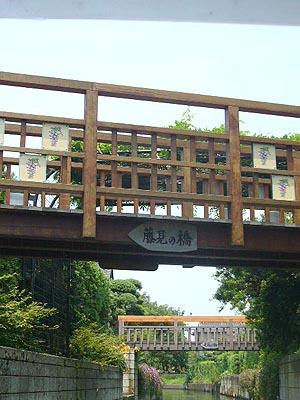 佐原水生植物園(2009年6月27日)24