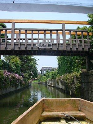 佐原水生植物園(2009年6月27日)25