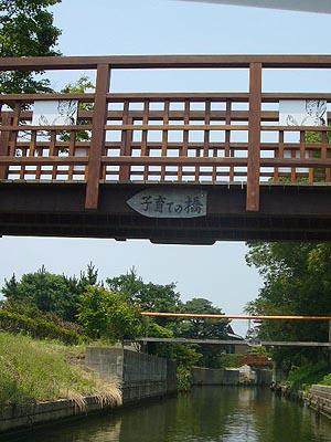 佐原水生植物園(2009年6月27日)27