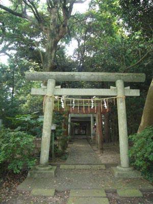 佐原水生植物園(2009年6月27日)43