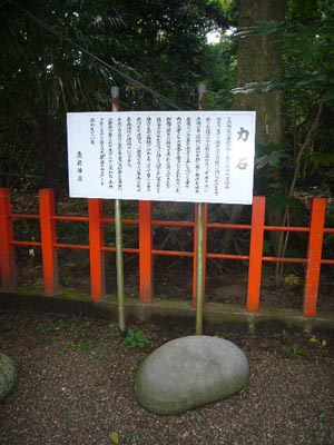 佐原水生植物園(2009年6月27日)45