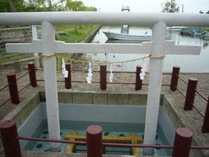 佐原水生植物園(2009年6月27日)52
