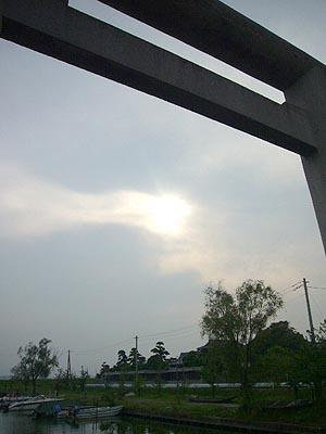佐原水生植物園(2009年6月27日)54