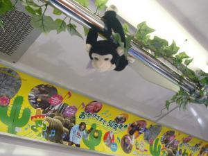 伊豆吉田亭ライブ(2009年9月5日)10